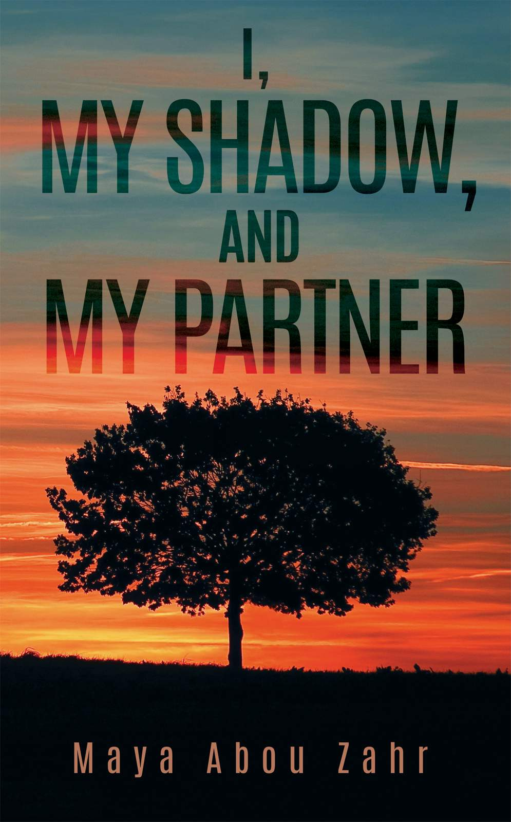 I, My Shadow, and My Partner